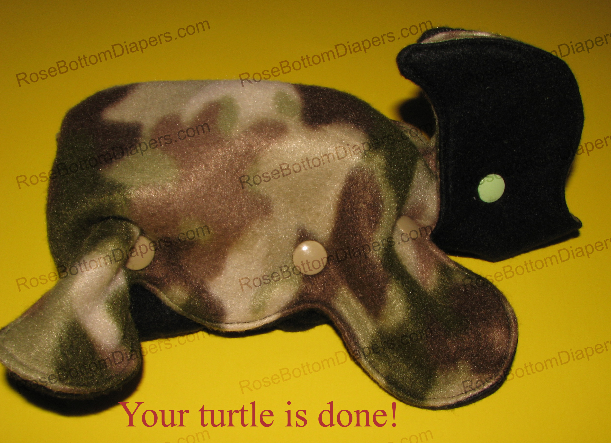 turtle9 copy
